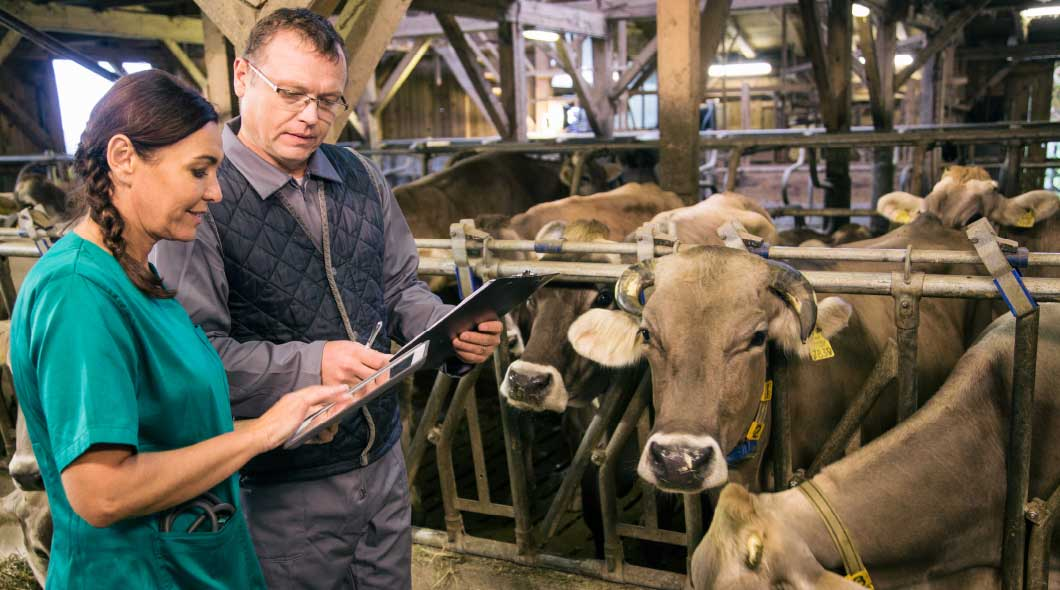 Veterinary Feed Directive (VFD) Resources