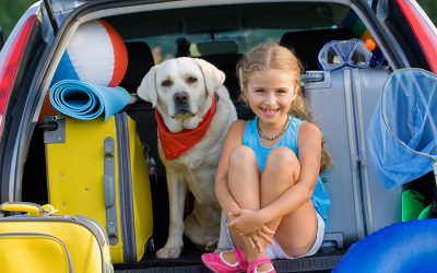 5 Resources You Need for Summer Travel with Pets