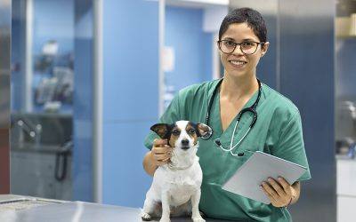 Celebrating National Veterinary Technician Week