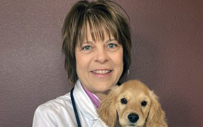 GVL Small Animal Industry Expert Brenda Flaming, DVM