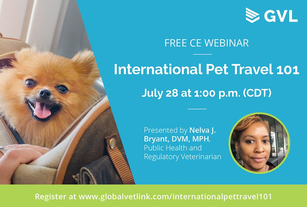 Free Webinar Explains Rules for International Travel with Pets