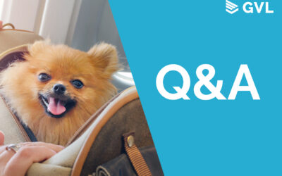 Q&A from International Pet Travel 101 webinar